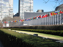 The Portuguese Language Institute - POLI offers portuguese classes at United Nations