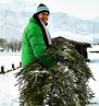 CITY OF NEWARK TO COLLECT OLD CHRISTMAS TREES  STARTING ON JANUARY 9, 2012, THROUGH FEBRUARY 3, 2012